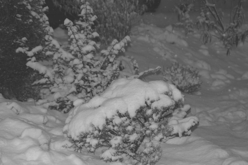 Der erste Schnee vor unserer Haustür