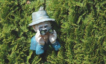 Blick über den Gartenzaun: Die Ruhrbarone sorgen sich um ihr Trinkwasser