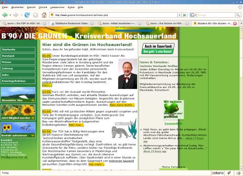 Screenshot: Die Website der Grünen im HSK am 11. Mai 2009