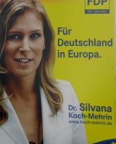 Mit Chance weg: noch eine taube FDP-Nuss (archiv europawahlen 2009: zoom)