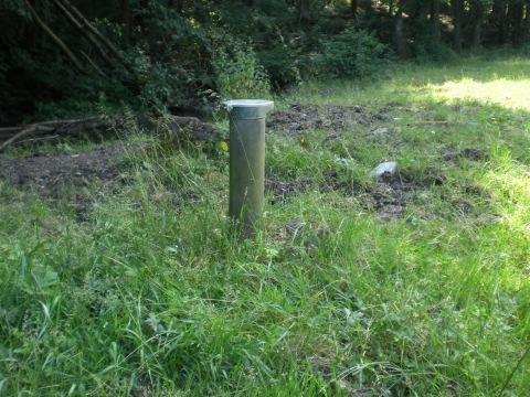 Ein Rohr steckt in der Weide neben der Neger