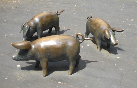 Vielleicht könnte man die Börsenbullen austauschen - gegen diese Tiere (foto: archiv)