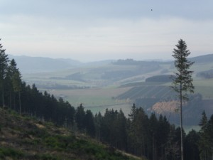 Laufend ins Tal und auf die Berge blicken (archiv: zoom)