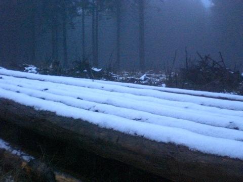 Schneer-Reste am Kahlenberg in der Abenddämmerung