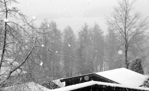 Es schneit um 8:30 Uhr in Winterberg (foto: zoom)