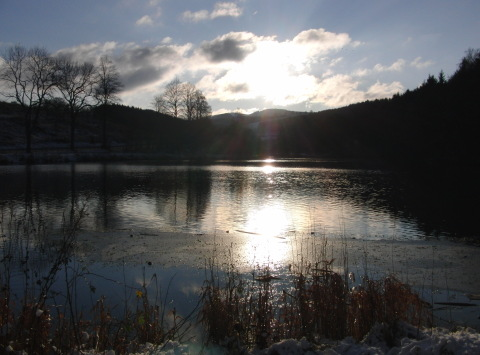 Heute Nachmittag: Der Stausee im Negertal zwischen Brunskappel und Siedlinghausen. (foto: zoom)