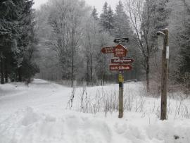 Die Marktplätze - heute unterwegs im Schnee ... (foto: zoom)