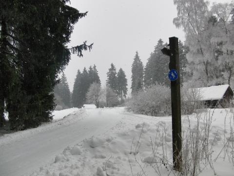 Die Minenplätze bei Winterberg vor drei Tagen (foto: zoom)