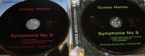 Gustav Mahler, Symphonie No. 9, Die Bamberger Symphoniker unter Jonathan Nott (foto: zoom)