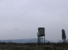Auf der Höhe Blickrichtung Ruhrtal