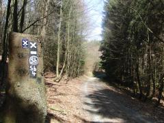 Wanderweg oberhalb von Silbach