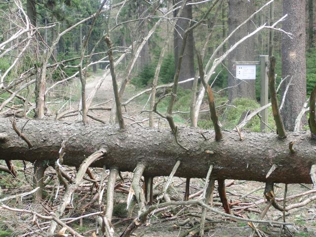 Barrikaden auf der Hunau (foto: zoom)
