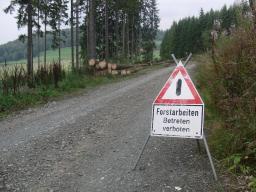 Forstarbeiten auf der Laufstrecke (foto: Zoom)