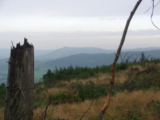 Hinter dem Kahlenberg. Blickrichtung Bruchhauser Steine. (foto: zoom)