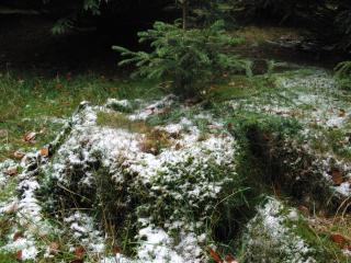 Schnee auf der Sange am 21. Oktober(foto: zoom)