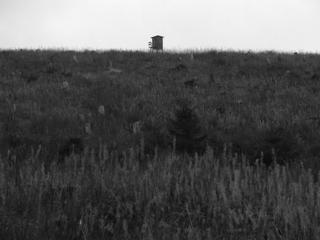 Die Jagd ist offen: zur Zeit auf alles (foto: zoom)