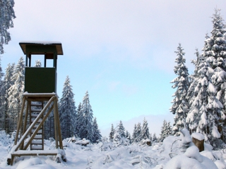 Hochsitz im Schnee nahe dem Kahlenberg. (foto: zoom)
