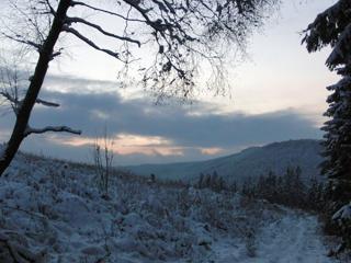 Heute wieder im Schnee gelaufen (foto: zoom)