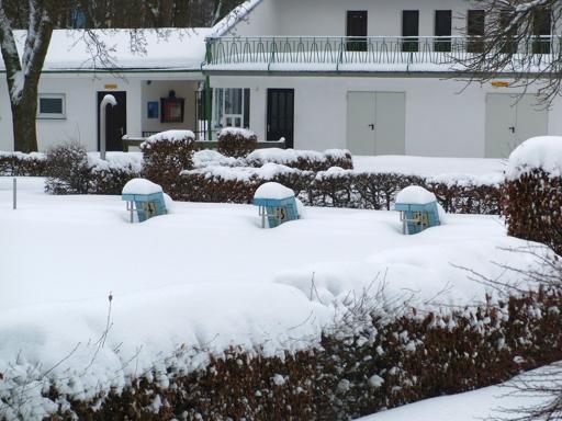 Freibad Siedlinghausen: Startblöcke verschneit. Keine Wettkämpfe mehr möglich. (foto: zoom)