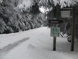 Erster Weihnachtstag. Laufen Richtung Golfplatz Winterberg. (foto: zoom)