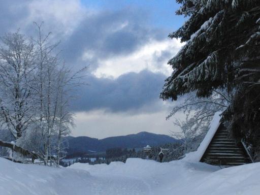 Blick vom Schmantel-Rundweg in Winterberg. (foto: zoom)