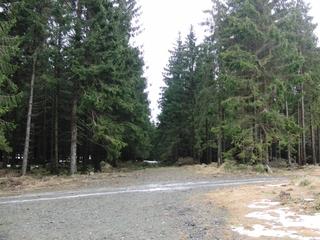Kurz vor dem Gipfel: Schnee Mangelware. (fotos: zoom)