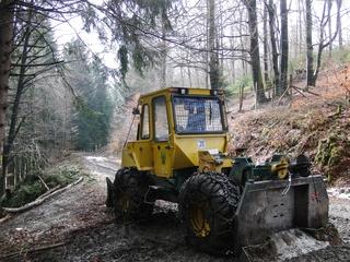 Die Waldarbeiten haben begonnen. (foto: zoom)
