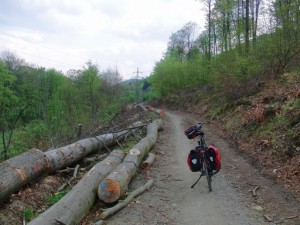 Ruhrtalradweg: streckenweise rustikal. (foto: zoom)