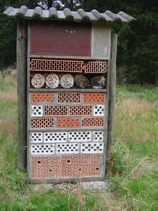 Alle ausgeflogen. Insektenhotel auf den Minenplätzen. (foto: zoom)
