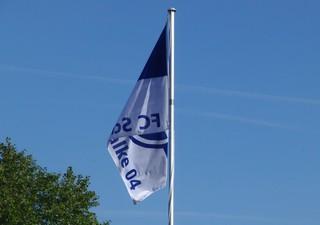 Schrebergartenfahne im westlichen Ruhrgebiet (foto: zoom)