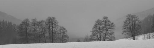 Ein letzter Lauf im alten Jahr über den Hömbergsattel (foto: zoom)
