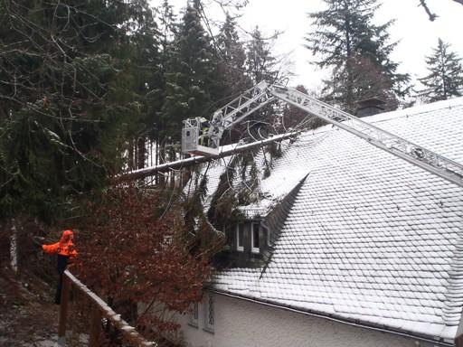 Am Hängeberg stürzte eine Fichte auf das Dach eines Wohnhauses (fotos: Feuerwehr Brilon)