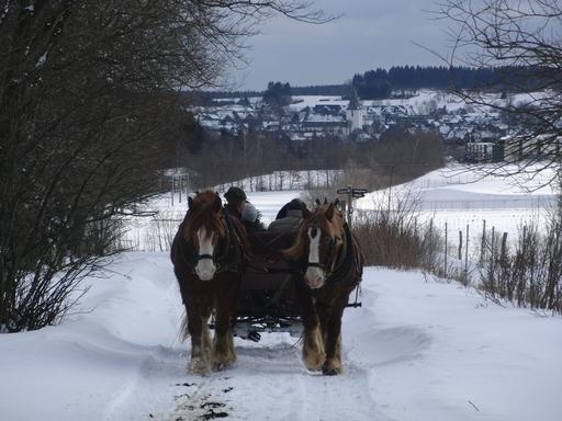 Mein Gefühl sagt mir: der Winter ist vorbei (foto: zoom)