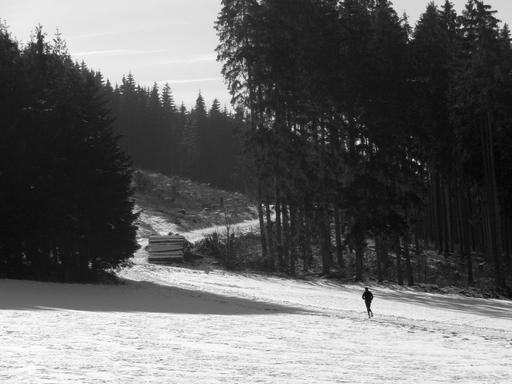 Winter auf der Ennert im Februar 2012 (foto: zoom)