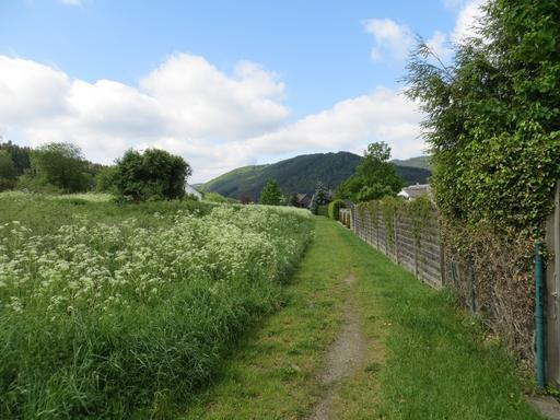 Links vom Weg das ausgewiesene Baugebiet, rechts die Anwohner (foto: zoom)