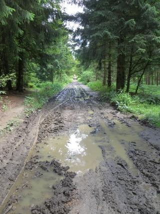Matsch und Modder. Laufstrecke vom Großen Bildchen Richtung Hunau. (foto: zoom)