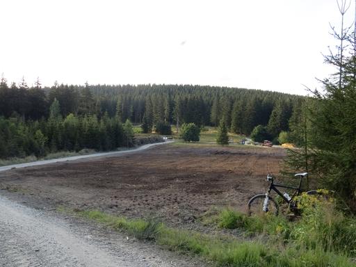 Oberhalb der Minenplätze nicht weit entfernt vom Ferienpark Landal ist eine große Fläche gerodet worden.  (foto: zoom)