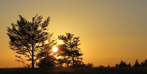 Abend auf dem Kahlen Asten (foto: zoom)