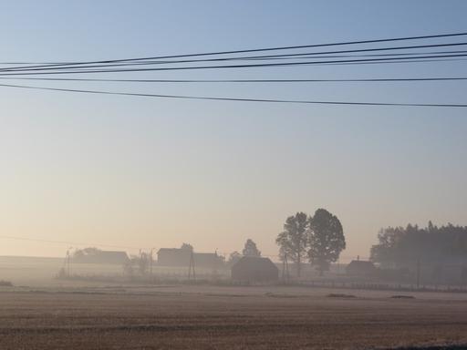 Heute Morgen in der Nähe von Olesno in Polen (foto: zoom)