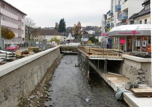 Henne entdeckelt: unter der Brücke durch und dann in die Ruhr (foto: zoom)
