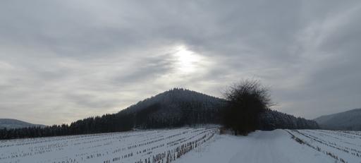 Gut für eine Umleitung: Laufstrecke oberhalb von Siedlinghausen (foto: zoom)