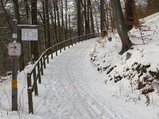Der Ruhrtalradweg heute an der Ruhraue bei Bigge. Spikes sind von Vorteil. (foto: zoom)