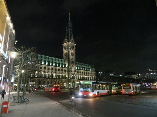 Das Hamburger Rathaus im Februar. (foto: zoom)