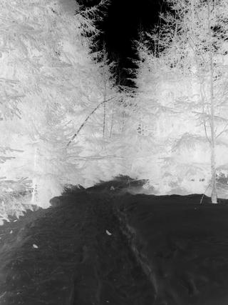 Laufen im Schnee: Negativ (foto: zoom)