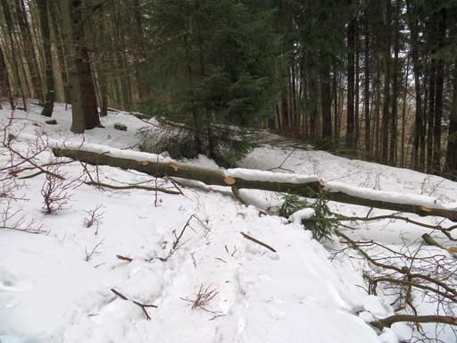 Verschneite Wanderwege