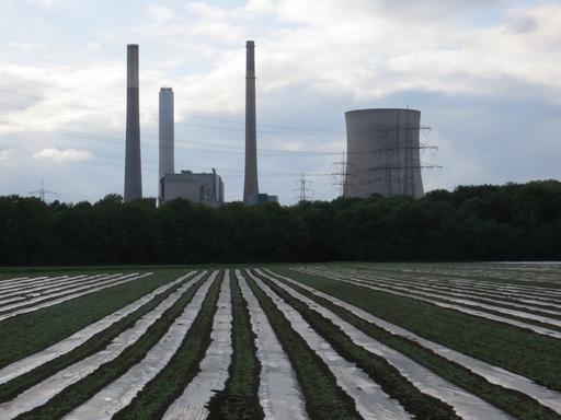 Kohlekraftwerk Möllen