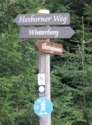 Sportliche Winterberger kennen diesen Weg. (foto: zoom)