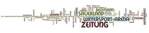 WordleWP20131106
