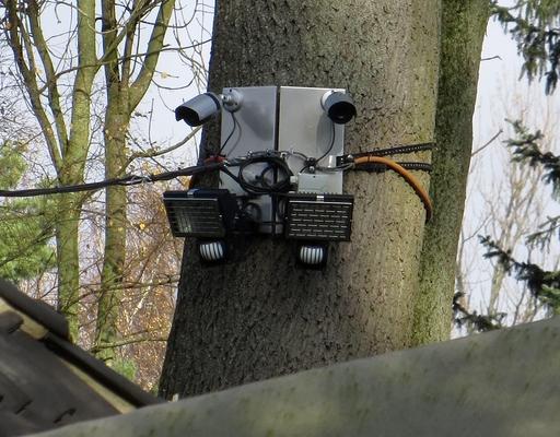 Überwachungskameras im Park