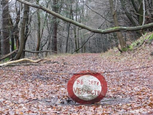 Laufend zum Bergsee